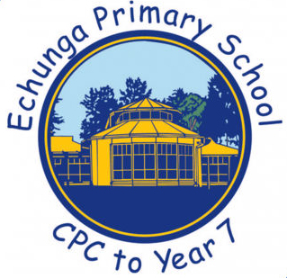 Echunga Primary School Retro-fit Audio Installation